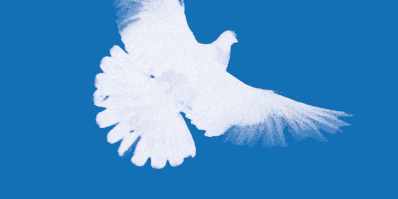 DIE LINKE. Friedenspolitik - Für den Frieden: gegen Waffenexporte